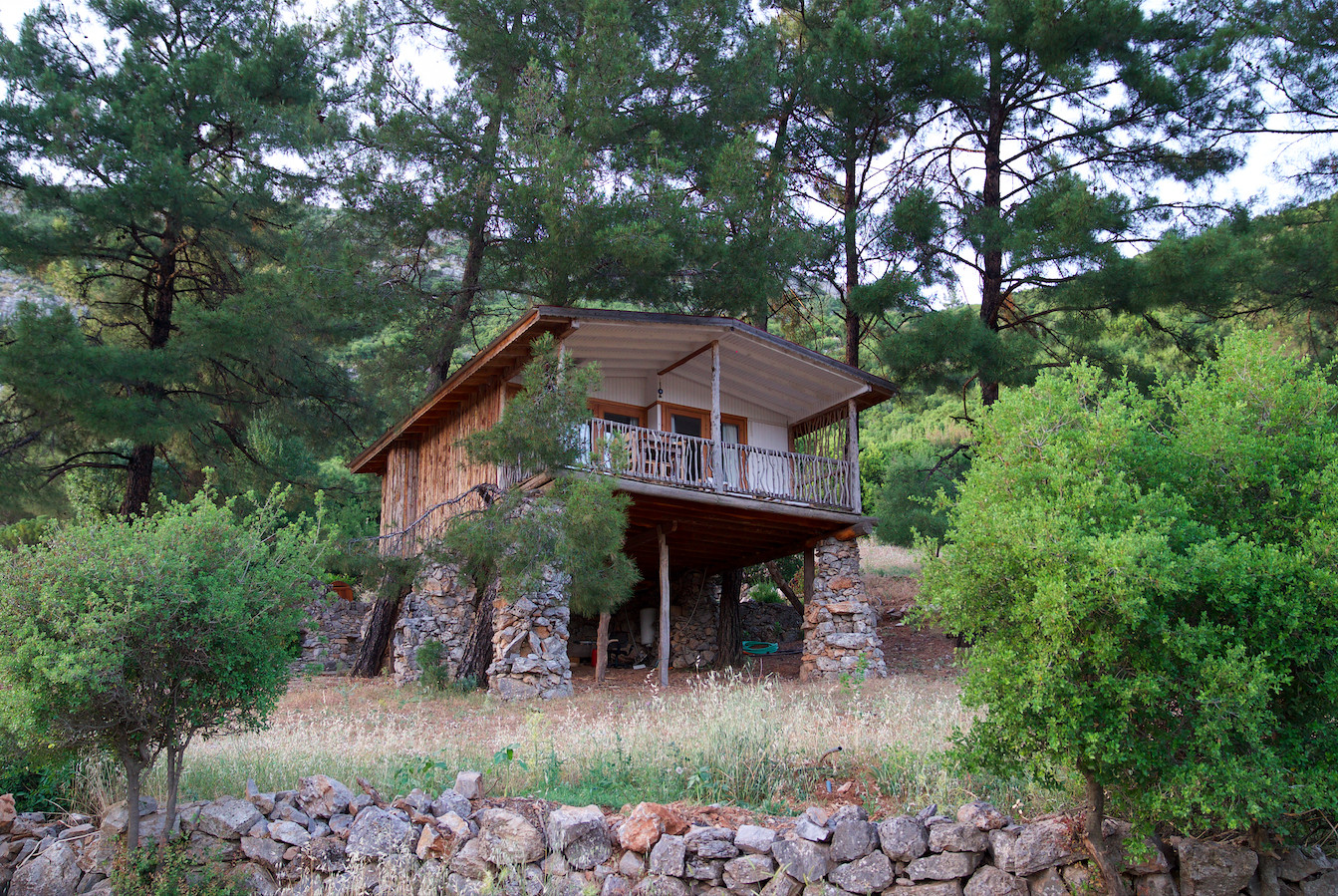 Treehouse Yenice