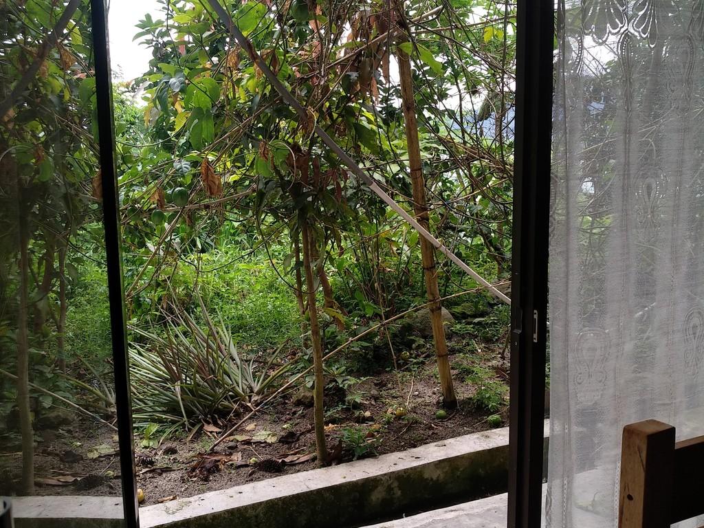 Family Room Lake/Garden